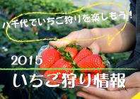 15waku-newmigi_ichigo2015.png