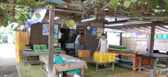 200814-9.tenpo.jpg